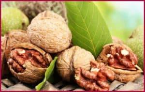 Орехи с листвой