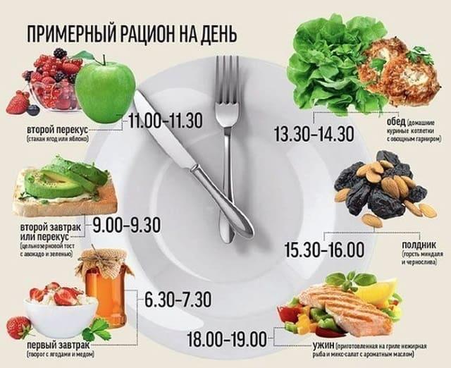 Примерный рацион питания на день