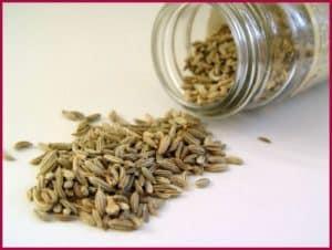 Семена укропа в банке