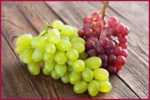 Виноград на столе
